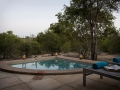 Arathusa bush-facing Luxury Suite, private pool