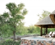 Arathusa-Private plunge pool and verandah of a bush-facing Luxury Suite